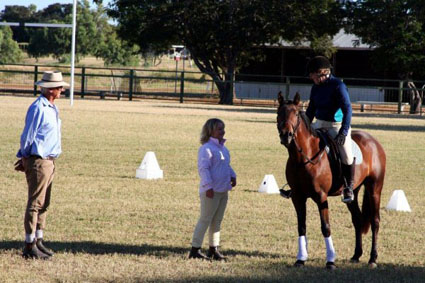 people getting horse coaching lessons